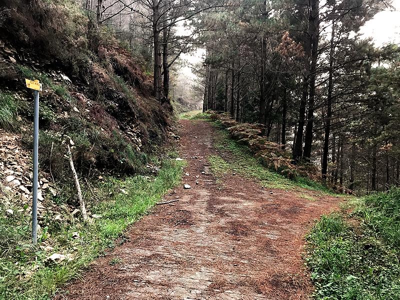 Ruta al Pico Moru